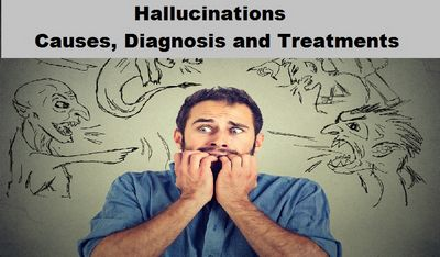 Understanding the Causes of Hallucinations